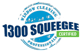 Certified professional window cleaning